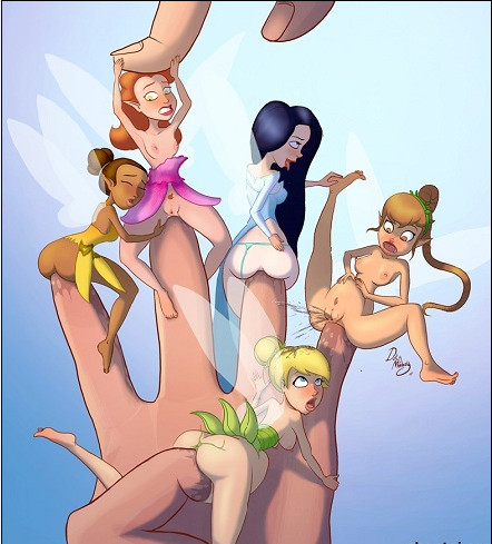 Disney Fairies - Toons western
