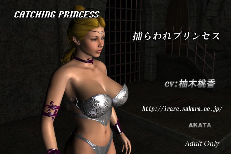 Akata Catching Princess - Monsters