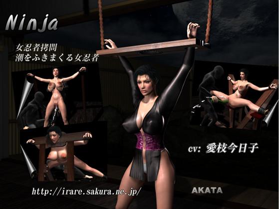 Akata - Ninja (GameRip)