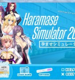Haramase Simulator 2017 (Alpha) Ver.0.1.2a