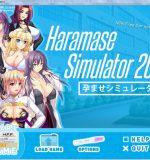 Hs-dev – Haramase Simulator 2017 (InProgress) Ver.0.2.2b