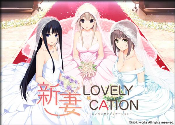 Hibiki Works - Niizuma Lovely x Cation