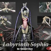 A Third Dimension - Labyrinth Sophia