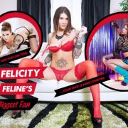 Lifeselector - Felicity Feline's Biggest Fan