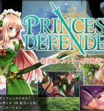 NineBirdHouse – Princess Defender