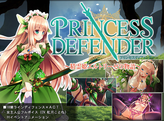 NineBirdHouse - Princess Defender
