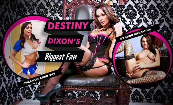 Lifeselector - Destiny Dixon's Biggest Fan